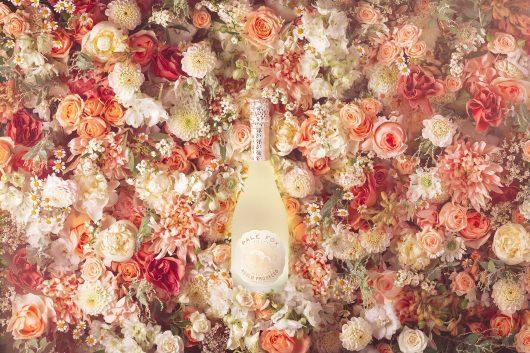 Pale Fox Prosecco   Harry Cooke   Imagery   Saxon Packaging Blog   Wine Packaging   Prosecco Packaging